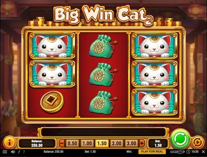 Play Big Win Cat now