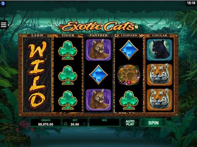 Exotic Cats slot vertical wilds feature