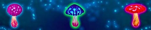 Magic Mushrooms slot wilds